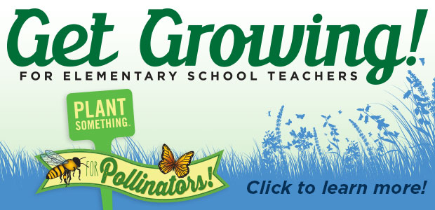 Get Growing! For Elementary School Teachers